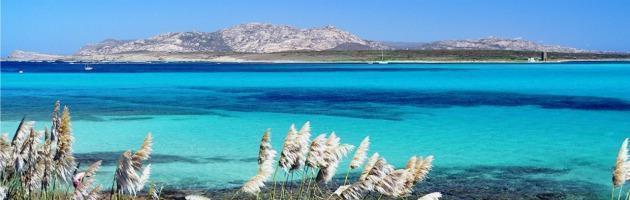 Mare, spiaggia che vai pagella che trovi Guerra tra Goletta verde e Bandiera blu