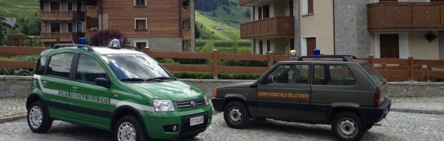Abusi edilizi, a Bormio ispezione nei sottotetti del consigliere regionale Pdl