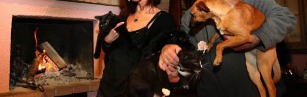 Per combattere il randagismo due deputate Pdl pensano alla tassa su cani e gatti