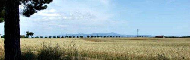 L'Agro Romano a rischio scomparsa: Alemanno vuole costruire 66mila case