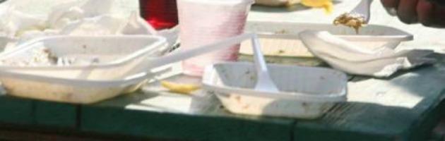 Raccolta differenziata, ma i piatti usa e getta finiscono nell'inceneritore