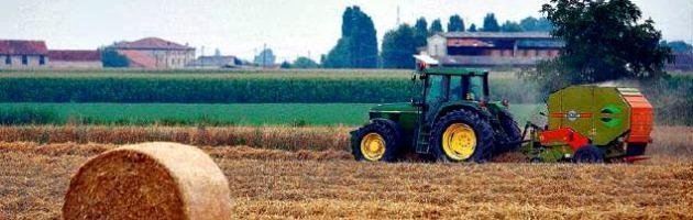 istituto per lo sviluppo dell'agroalimentare interna nuova
