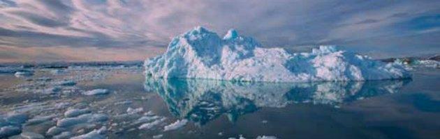 Riscaldamento globale, microalghe per catturare anidride carbonica sui fondali