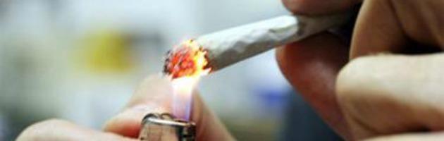 Salute, tra le 4800 sostanze che respira chi fuma c'è anche un virus delle piante