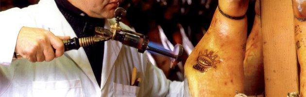 Scarti ai maiali che diventavano prosciutti Dop: il Nas sequestra 750 suini