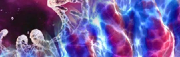 Genetica, le donne vivono più degli uomini grazie al Dna mitocondriale