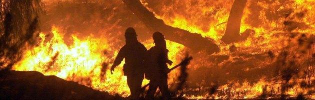 """Maremma in fiamme. """"Mattanza ambientale, oltre un milione di danni"""""""