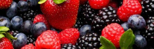 Depressione, té frutti di bosco e cioccolato contro i disturbi dell'umore