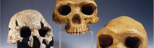 """Nature: """"Due 'coinquilini' per l'Homo erectus"""". Trovati fossili in Kenya"""