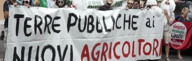 Agricoltura: corsa alle leggi su grappe e tartufi, nulla di fatto sui fondi demaniali