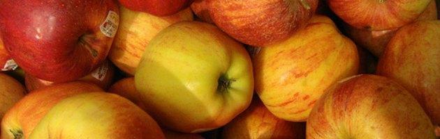 """Salute, studio La Sapienza: """"Aumentano residui pesticidi nella frutta"""""""