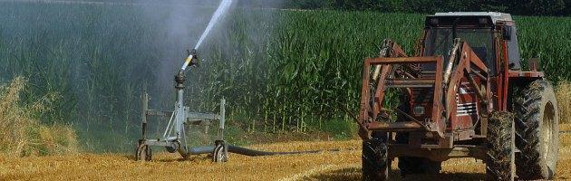 Agricoltura, prima causa della deforestazione globale e dei gas serra