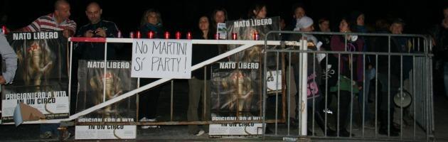 Parma, protesta animalista contro il circo. Tensione prima dello show
