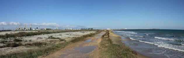 """Brindisi come Taranto: """"Malformazioni neonatali legate all'inquinamento"""""""