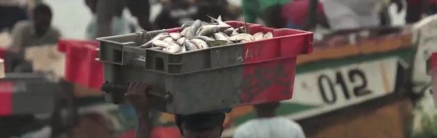 Mafia della pesca e voracità europea: il Senegal rischia la crisi alimentare