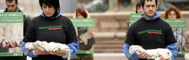 Pasqua, protesta choc a Bologna: agnellini morti in piazza (foto)