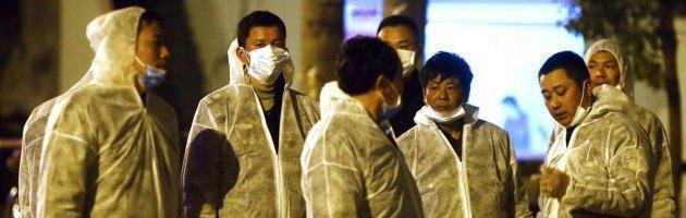 """Aviaria, nuova influenza: 21 casi e 7 vittime. Oms: """"Attenzione alta, niente psicosi"""""""