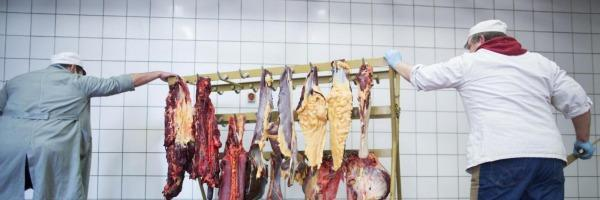 """Carne di cavallo in Italia, ministero della Salute: """"Positivi 93 test su 454 eseguiti"""""""