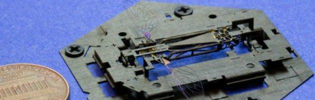 Insetti Robot