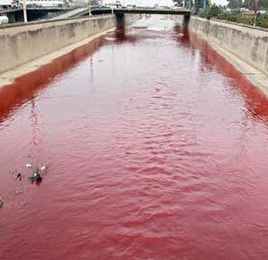 Beirut_River_mysteriously_runs_blood_red
