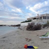 Daniele Pezzetta - spiaggia di torre lapillo