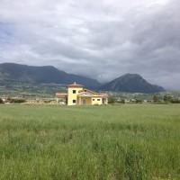 Lola Toscani. Paestum (Salerno)