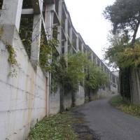 Scuola Media Alfieri Montafia, Asti - Raffaele Ichetti