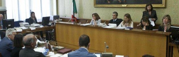 "Stamina, Lorenzin: ""Avrei voluto dare speranza, ma parere comitato unanime"""