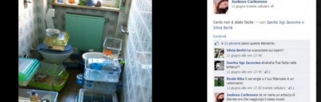 Blitz animalista a Milano, foto su Facebook mostrano i topi ammassati in un bagno