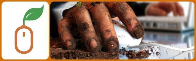 """Ortomanager.it: prodotti tipici """"su misura"""" coltivati con un click"""