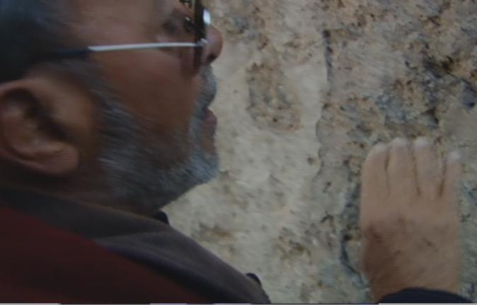 Servizio Pubblico, il degrado di Pompei, un tesoro abbandonato