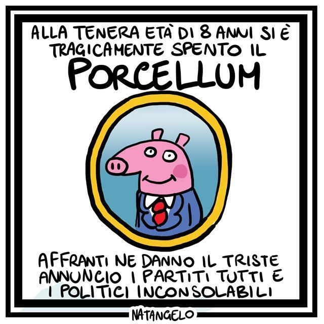 La vignetta del giorno: Addio porcellum