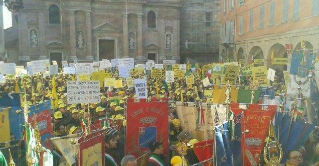 """Reggio Emilia, allevatori in piazza per il Made in Italy: """"Chiuse 3 stalle su 4"""""""