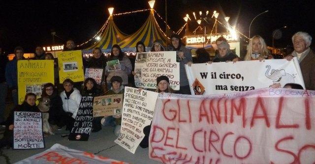 Circo di Bologna, Tar autorizza il ritorno di leoni ed elefanti. Blitz degli animalisti