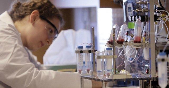 Tumori, identificate nuove cellule immunitarie che contrastano carcinoma