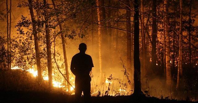 "Chernobyl, microbi ""malati"" e vegetazione secca: nuovi rischi di incendi (e di fall out)"