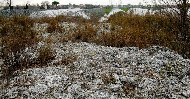 Rimini, maxi discarica abusiva su fiume. Dopo videodenuncia arriva la bonifica
