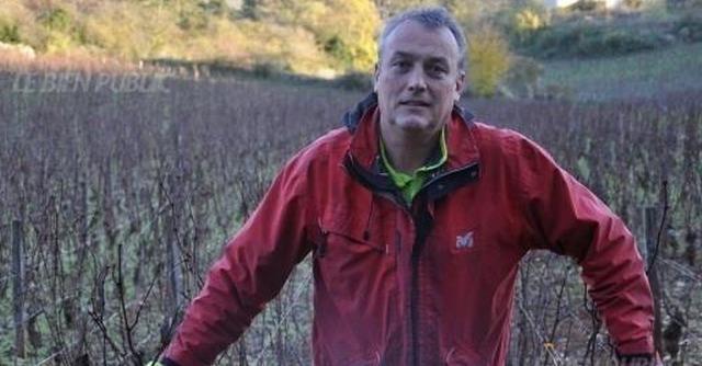 Francia, rifiutò di trattare vigna con insetticida: agricoltore bio evita il carcere