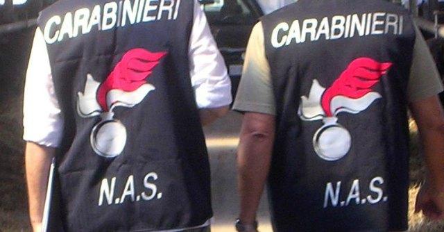 Taranto, vermi nel reparto di rianimazione. Il Codacons ne chiede chiusura