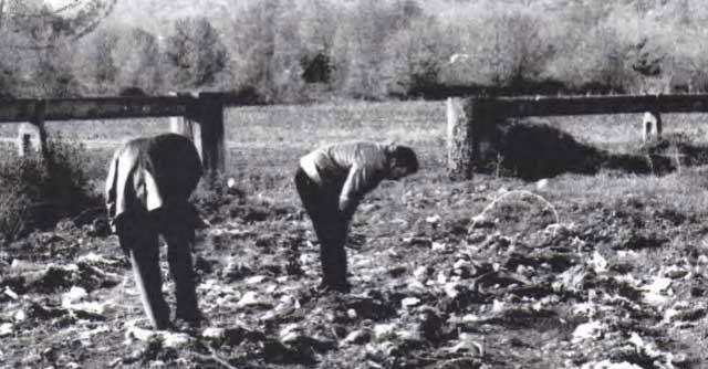 Cassino, 20 anni di sversamenti illegali. Chiusa area di 10mila metri quadrati