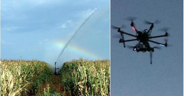 Agricoltura, un drone ecologico fa la guerra al parassita del mais