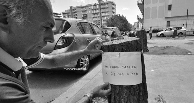 Taranto, nella città dei veleni il Comune taglia gli alberi mangiasmog