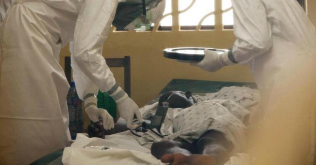 Niger: Ebola e l'albero di Niamey