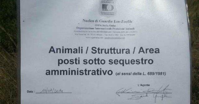 """Modena, sequestrata l'area Ex Frattina: """"Discarica piena di materiale tossico"""""""