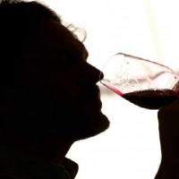 20140930 vino-sommelier-artificiale-aarhus-university