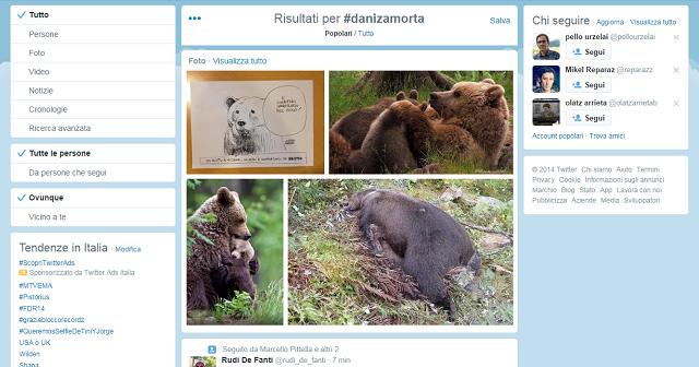 Daniza-Twitter