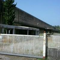 musolino_640