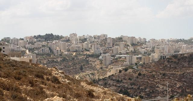 Palestina, diario di bordo /4: la missione di Tarek