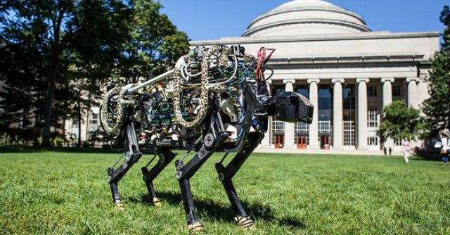 robot ghepardo