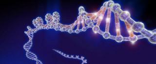"""Malattie genetiche, studio dell'università dell'Oregon: """"Modificato con successo il Dna, possibile prevenire le ereditarie"""""""